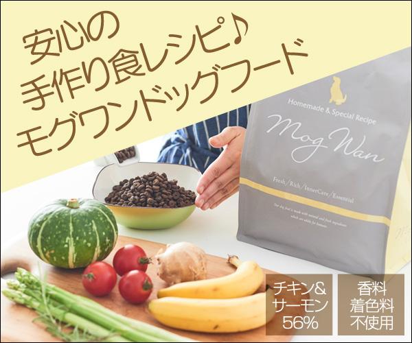 スペシャルフード★【モグワンドッグフード】