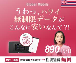 ハワイ専用ポケットWiFiならスピード抜群のALOHA DATA[アロハデータ]