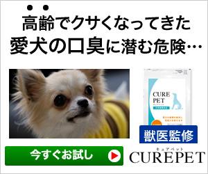 愛犬用サプリ【キュアペット】腸内環境が悪化すると、口臭と体臭をクサくしてしまう