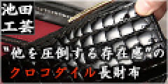 池田工芸のポイント対象リンク