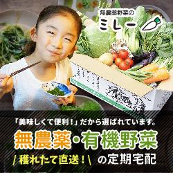 マスコミ取材多数!朝穫り無農薬野菜を産地から当日発送【無農薬野菜ミレー】