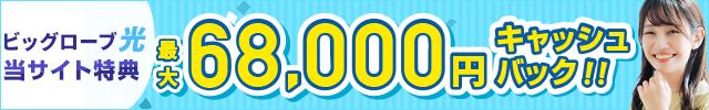 ヤマダ電機 インターネット キャンペーン